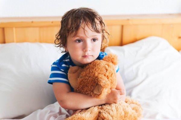 Ученые: грубость мальчиков и подросток зависит от строения мозга